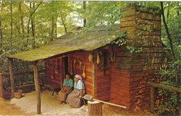 Carte Postale Etats-Unis  Indiens Cherokee  Très Beau Plan - Etats-Unis