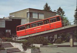 Dolderbahn - Trains