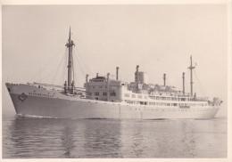 """Photo Carte De La Compagnie Maritime Belge S.A. Le S.S. """" Elisabethville """" - Passagiersschepen"""