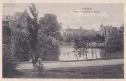 Posen Partie Im Botanischen Garten - Polen