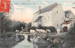 45 - LOIRET / Thou - 455989 - Moulin Perret - France