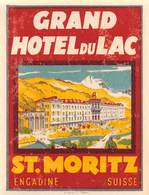 "D8546 ""GRAND  HOTEL DU LAC - ST MORITZ - ENGADIN SUISSE"" ETICHETTA ORIGINALE - ORIGINAL LABEL - Hotel Labels"