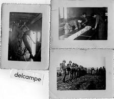 3 Photos - MILITARIA - PHILIPPEVILLE  ( Algérie 1947)   PARACHUTISTES - Krieg, Militär
