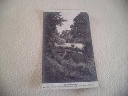 SALON D'HIVER 1910 ...TEMPS COUVERT PAR H. BIVA - Paintings