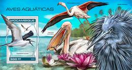 MOZAMBIQUE 2018 - Water Birds, Pelican S/S. Official Issue - Pelikanen