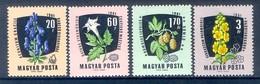 M28-  Magyar Hungrey Flowers. - Plants