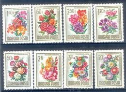 M33-  Magyar Hungrey Flowers. - Plants