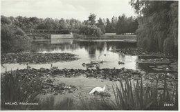 Sweden - Malmö. Pildammarna.   Sent To Denmark 1951   S-4352 - Sweden