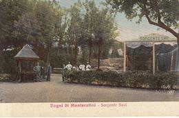 91 - Bagni Di Montecatini - Sorgente Savi - Italia
