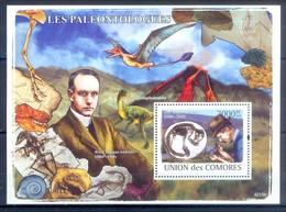 M58- Comores Comoros Komoren 2008. Paleontologists. Pre Historic Life. Dinosaurs. Fossils. - Stamps