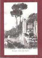 Cartolina  ANACAPRI STRADA DELLA MIGLIERA SOLD BY INTERNATIONAL STORES F GARGUIULO ANACAPRI NON VIAGGIATA - Napoli (Napels)