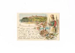 Cartolina / Postcard / Svizzera / Suisse / Souvenir De Romont / Non Viaggiata / Unsent - FR Fribourg
