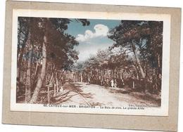 DEPT 80 - LOT De 10 CPA De CAYEUX SUR MER  - DELC - - Cartes Postales
