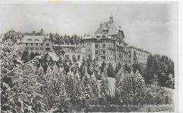 AK 0036  Semmering - Südbahnhotel Im Winterzauber / Verlag Frank Um 1921 - Semmering