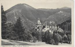 AK 0036  Semmering - Hotel Erzherzog Johann / Verlag Grapha Um 1920-30 - Semmering