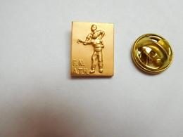 Superbe Pin's En Relief , Médical , FNATH , Fédération Nationale Des Accidentés Du Travail Et Des Handicapés , Handicap - Medical