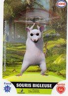 Carte Cora Le Collector Dreamworks Shrek 65/112 - Trading Cards