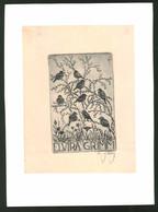 Exlibris Elvira Grimm, Vögel Auf Zweigen Sitzend - Exlibris