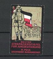 Reklamemarke Bester Strapazierstiefel Für Jungdeutschland, H. Puls Schuhfabrik In Burgkundstadt, Pioniere Mit Fahne - Cinderellas