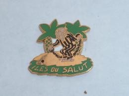 Pin's BAGNARD, ILES DU SALUT - Cities