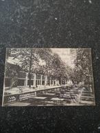 Kóln - Cöln // Restaurant Zoologischer Garten 1909 - Koeln
