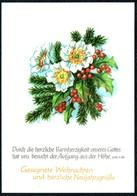 B7263 - TOP Glückwunschkarte Weihnachten - Spruchkarte - Schäfer Feinpapier Verlag Plauen - Noël
