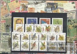 South Africa - Ciskei Unmounted Mint / Never Hinged 1981 Complete Volume In Clean Conservation - Ciskei