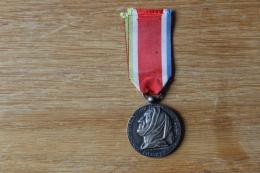 Medaille Reconnaissance Franco Italienne 1935 - France