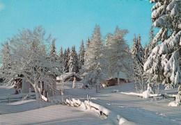 Swedish Winter - Unused - Sweden