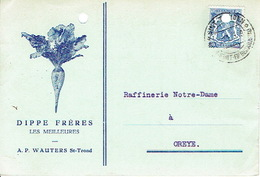 PK Publicitaire SINT-TRUIDEN 1943 -  A. P. WAUTERS - Agent Officiel Des Graines De Betteraves DIPPE FRERES - Sint-Truiden