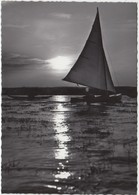 "NEUSIEDLERSEE, Bgld. ""Sonnenuntergang"", Used Real Photo Postcard [21878] - Neusiedlerseeorte"