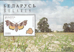 Weißrussland Block7 (complete.issue.) Unmounted Mint / Never Hinged 1996 Butterflies - Belarus