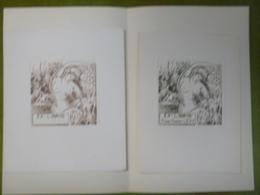2 Ex-libris Illustrés XXème (ou Projet) - Belgique Par Tilmans - ANDREWS - P.E. LEVY - Femme  Nue - Bookplates
