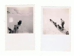 Lot De 2 Photos ( +/- 6 X 6 Cm) SUISSE, Ballade En Trineau Tracté Par Des Chiens.en 1948 (b230) - Lieux