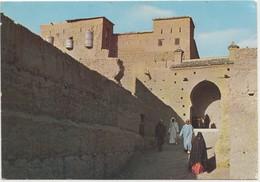 TAMGROUTE (Zagora), Morocco, 1980 Used Postcard [21896] - Morocco