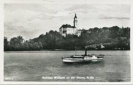 005472  Schloss Wallsee An Der Donau Mit Schaufelraddampfer - Sonstige