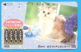 JAPAN Phonecard NTT -  Katze   Cat   Chat - Cats