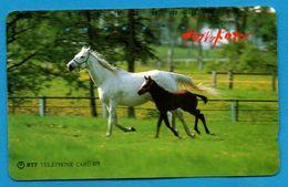 JAPAN   Phonecard  NTT -  HORSES - Horses