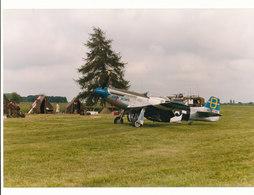 MUSTANG P 51 - Aviation