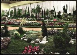 LIEGE - Floralies Liégeoises Internationales - 6-14 Septembre 1958 - Liege
