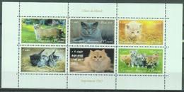 Chats - Territoire Autonome D'Océanie -neuf ** - Gatos Domésticos