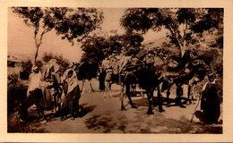 Algérie - Caravane - Centenaire En 1930 - Algeria