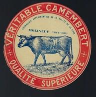 Ancienne Etiquette Fromage Véritable Camembert  Fromagerie Expérimentale Molineuf Loir Et Cher Vache - Cheese