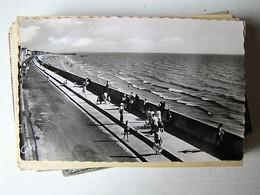 FRANCE - Lot 21 - 50 Anciennes Cartes Postales Différentes - Postcards