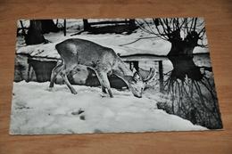 4397- Jongenskamp Kindervreugd, Olloy S/Veroin - 1963 - België