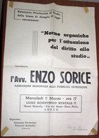 ENZO SORICE ASSESSORE REGIONALE ALLA PUBBLICA ISTRUZIONE BOZZA DI LEGGE MANIFESTO - Posters