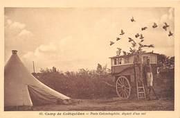 56-COËTQUIDAN- CAMP DE COËTQUIDAN- POSTE COLOMBOPHILE, DEPART D'UN VOL - France
