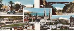 Bône. Carte Panoramique - Annaba (Bône)