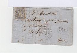 Sur Lettre Avec Courrier Helvetia Assise 30 C. Bleu. CAD Carouge. Oblitération PD. (696) - Marcophilie