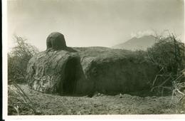 CP Kénia Case Massai Photogr. Zagourski 1935? L'Afrique Qui Disparait 2ème Série 171 - Kenya